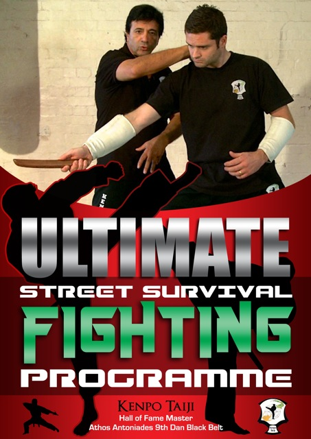 Ultimate Street Fight Poster
